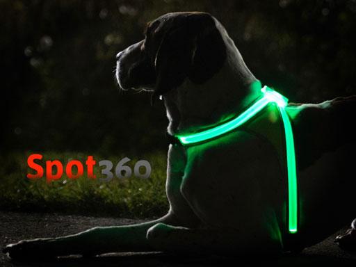spot360