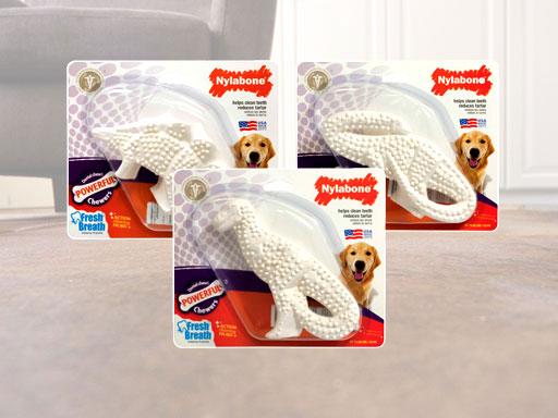 犬用歯磨きおもちゃナイラボーン デンタルダイナソー